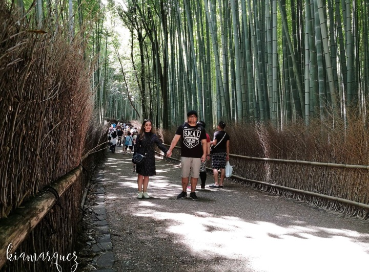 Japan Travel Diary: Kyoto and Nara